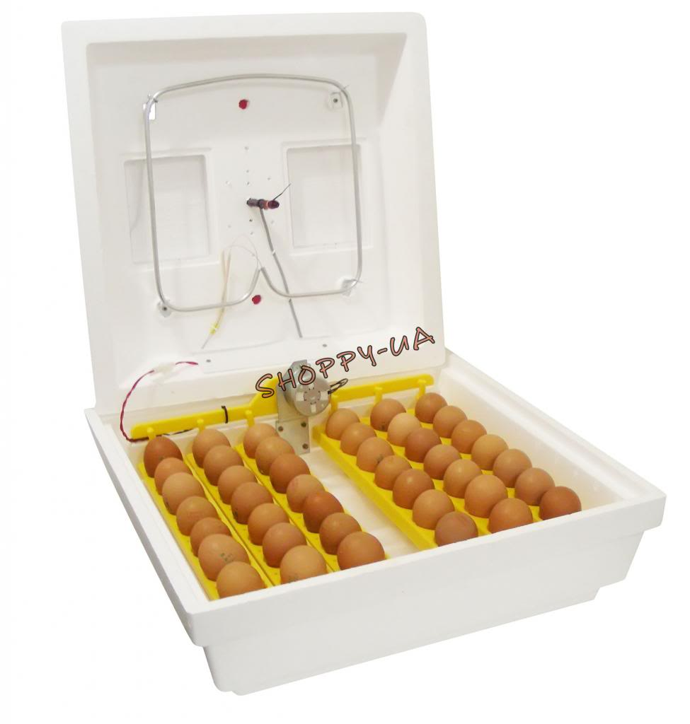 fully automatic domestic egg incubator with automatic egg
