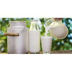Хранение молока в домашних условиях